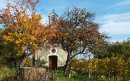 Lesencefalui álom (Szent Donát kápolna és környezete)
