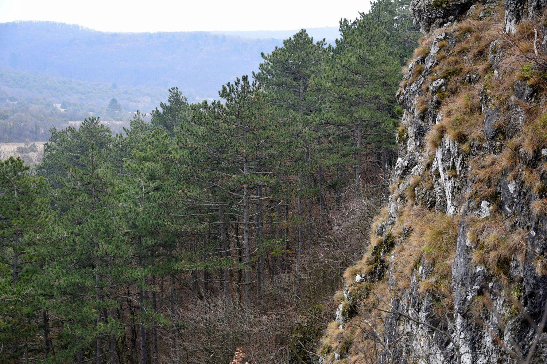 Kilátás a Koloska-szikláktól